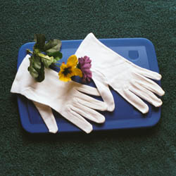 440cottongloves.jpg